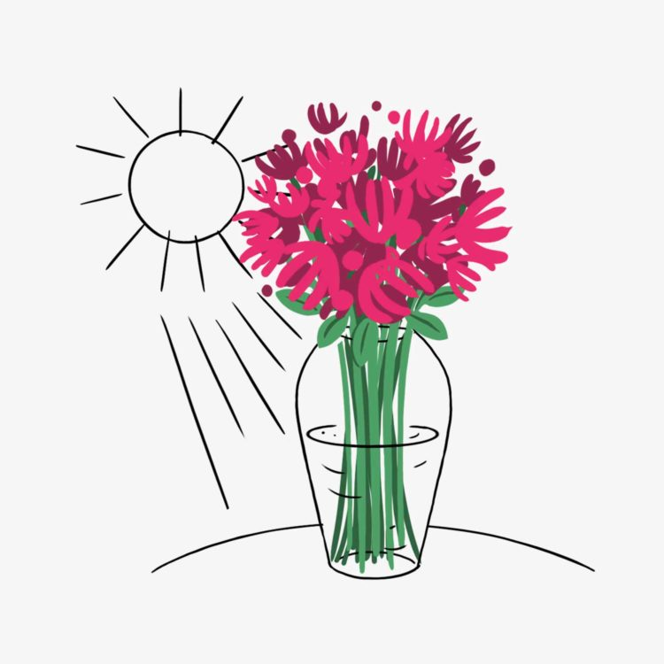 Flower Care - Avoid Direct Sunlight - Flower delivery Switzerland