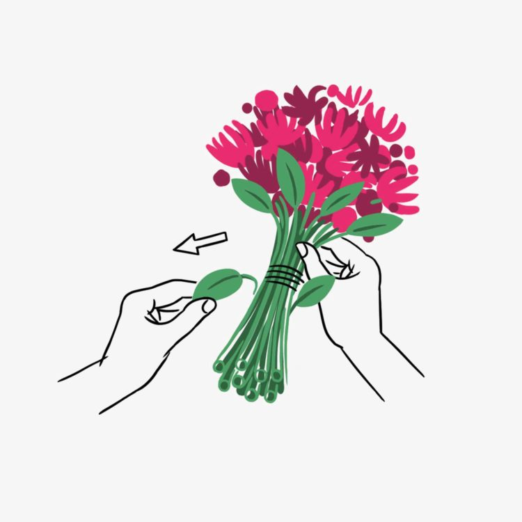 Flower Care - Remove The Leaves - Flower delivery Switzerland