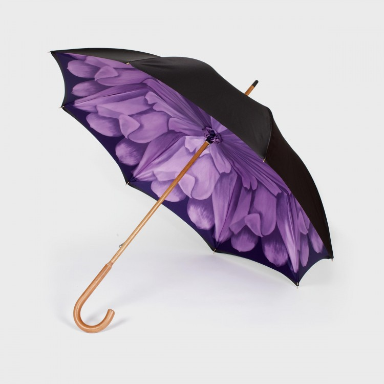 The Petrichor - PANAMY Umbrellas - Flower Bouquets delivered in Switzerland, Zürich, Basel, St.Gallen, Luzern, Geneva