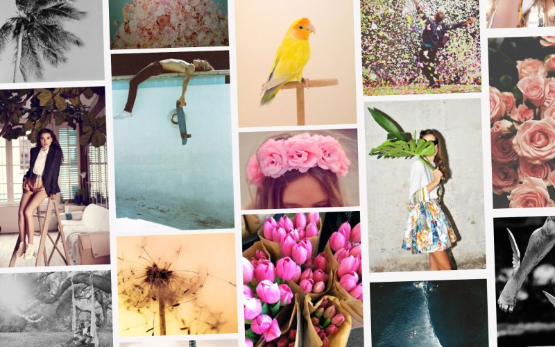 Inspiration - Get inspired by our daily mood-boards - PANAMY Flower Delivery Switzerland, Zürich, Basel, Bern, St Gallen, Lausanne