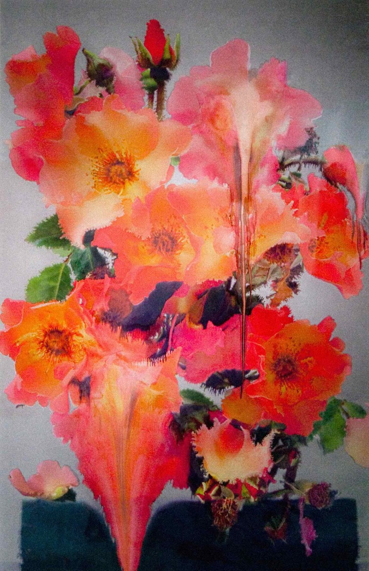 Nick Knight - Melting Flowers One - PANAMY Flower Delivery Switzerland