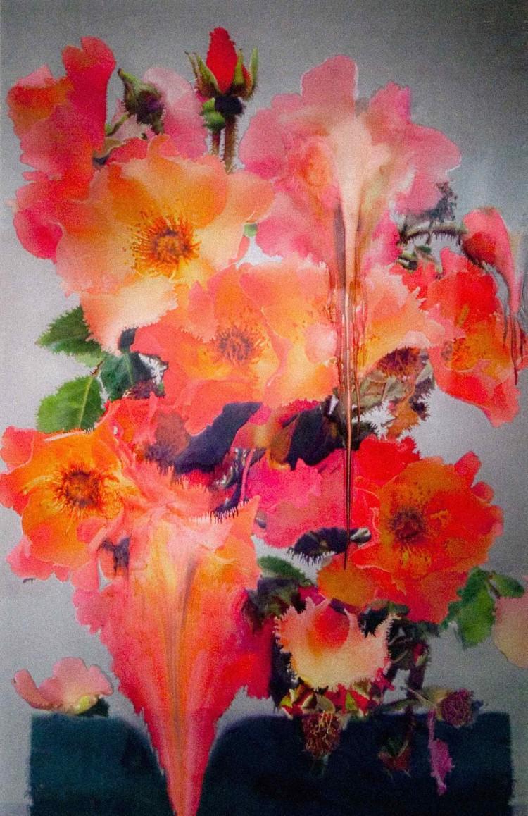 Nick Knight Flora - Image 1 - L' Art - PANAMY envoyer des fleurs en Suisse, Geneve