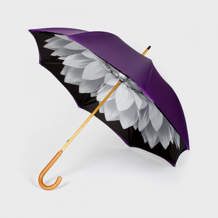 The Caligo - PANAMY Umbrellas - Flower delivery in Switzerland, Zürich, Basel, St.Gallen, Luzern, Geneva