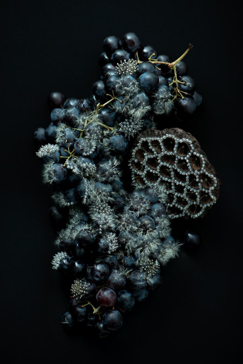 Dandelion Detail nr2 - Isabelle Chapuis, Duy Anh Nhan Duc - PANAMY Blumenversand Schweiz, St. Gallen, Luzern