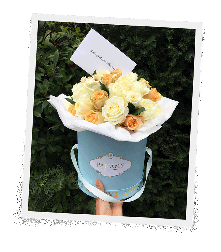 Flowerbox Panamy Il Candido Instagram Mobile